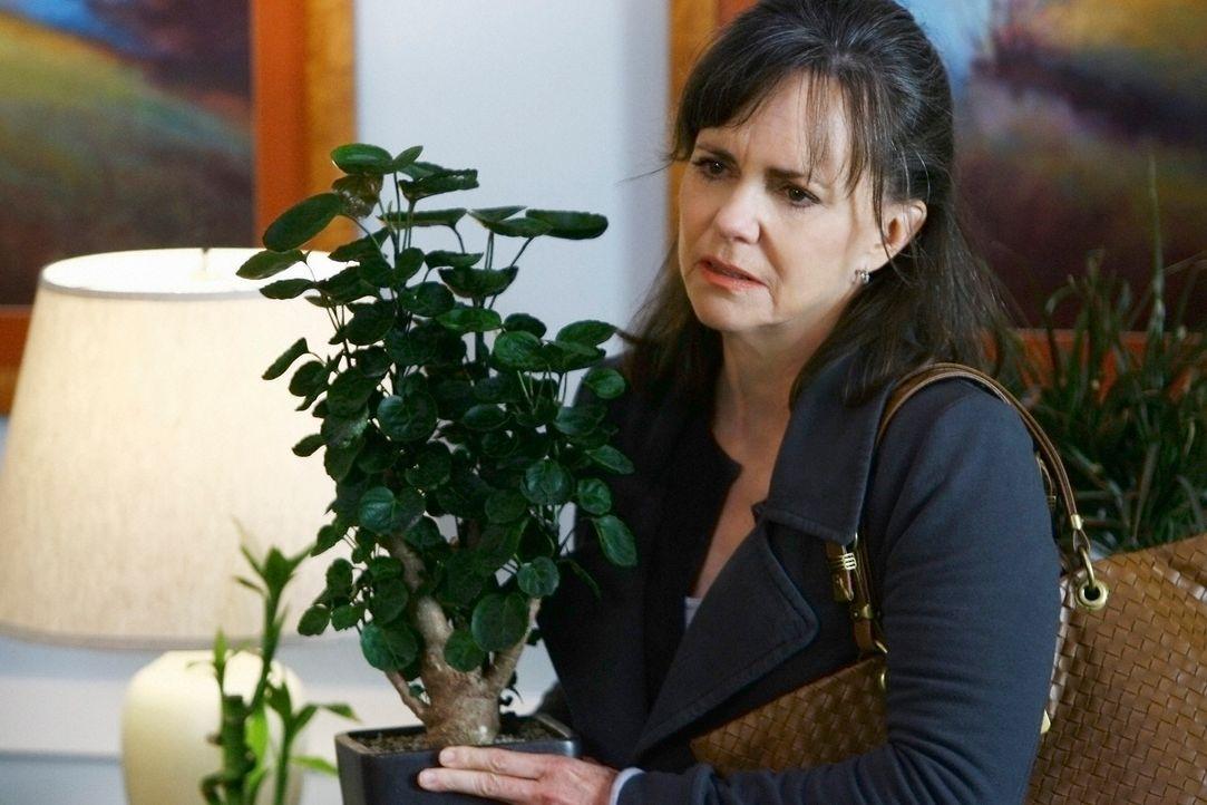 Versucht spontan im Krankenhaus ein schönes Thanksgiving auf die Beine zu stellen: Nora (Sally Field) ... - Bildquelle: 2008 ABC INC.