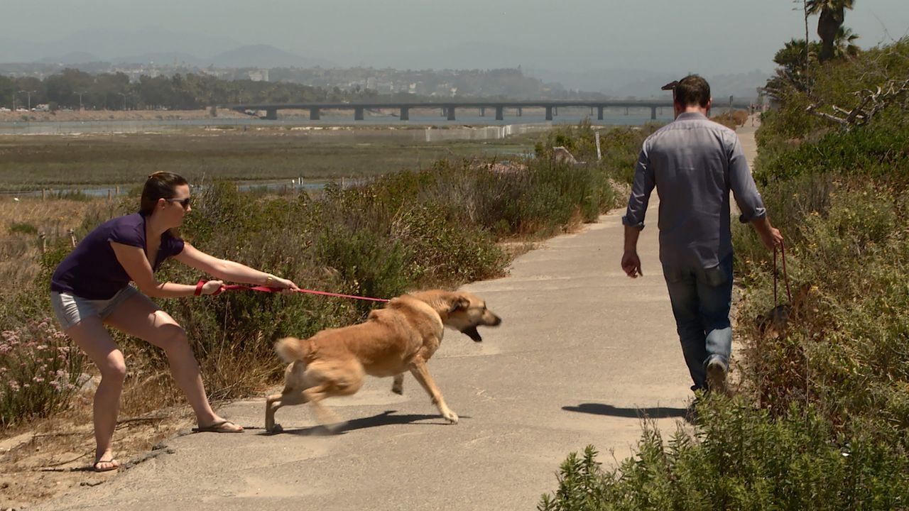 Der Notruf eines besorgten Vaters bringt Cesar zu einem Hundestrand in San Diego. Dort trifft er auf Mary (l.) und ihren Hund Dingo. Schnell ist kla... - Bildquelle: NGC/ ITV Studios Ltd