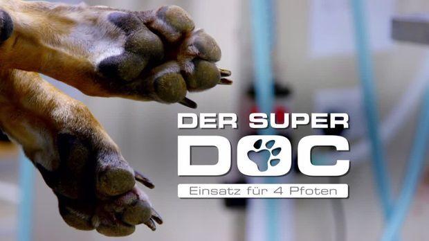 Super Doc Sixx