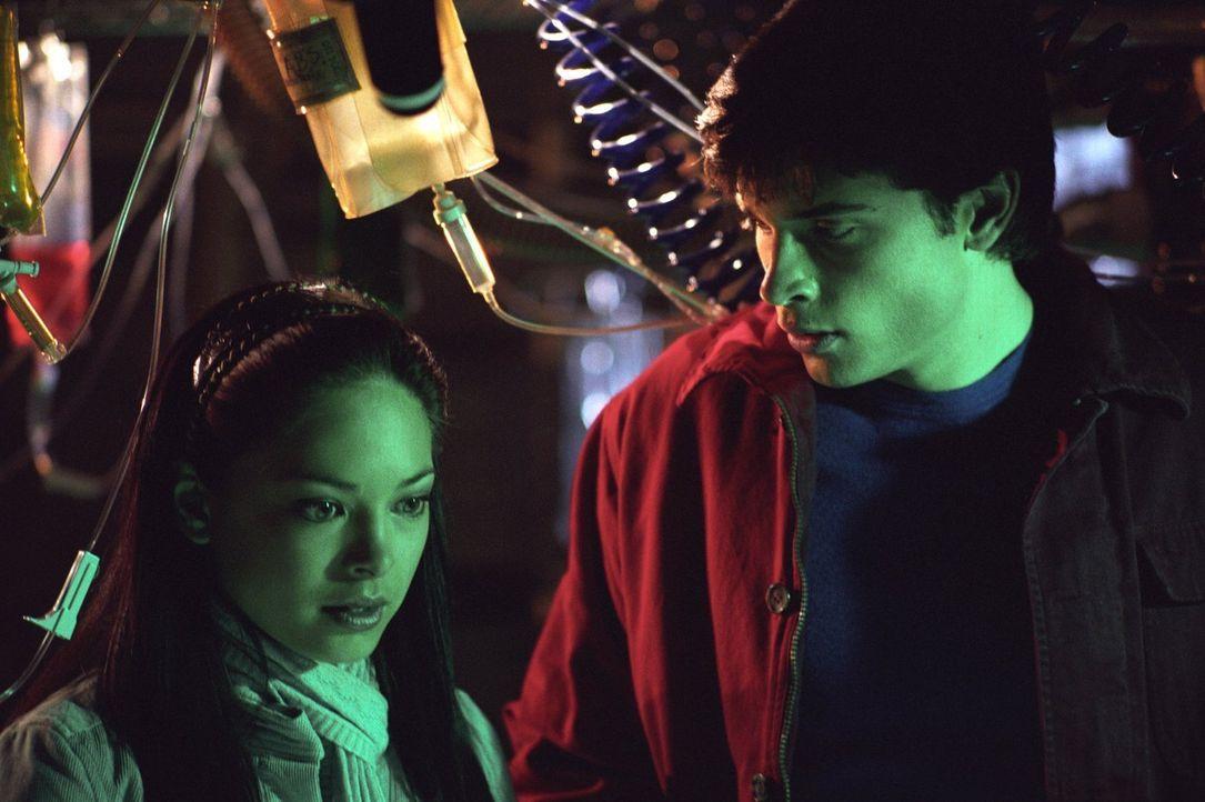 Als sich Lana (Kristin Kreuk, l.) schließlich Clark (Tom Welling, r.) anvertraut, findet dieser heraus, dass Emilys Vater Gentechniker ist und mit H... - Bildquelle: Warner Bros.