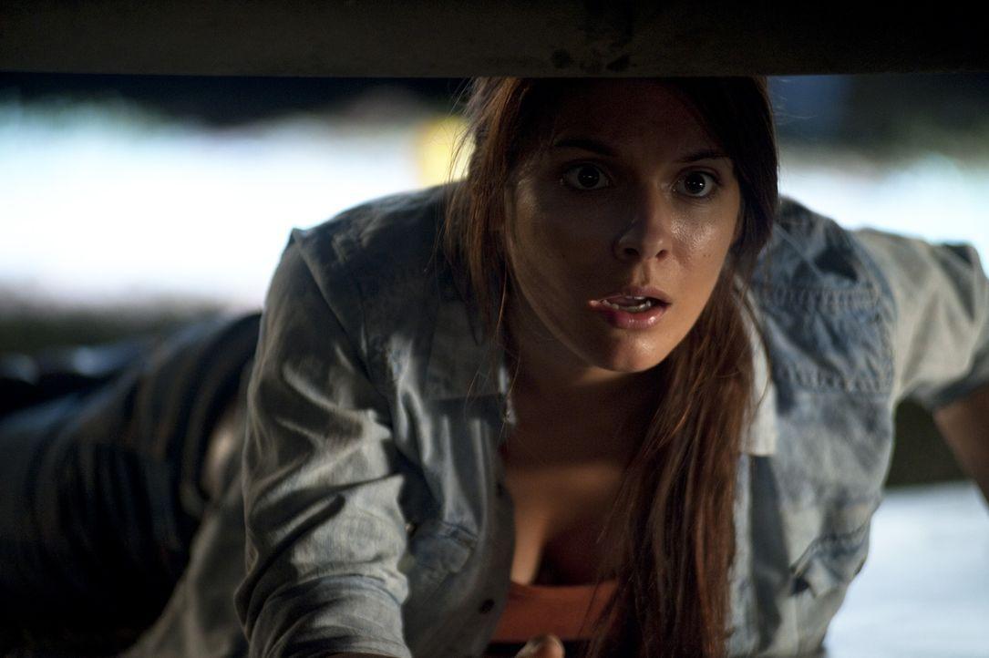 Aus einem Kurzurlaub in der Wildnis zurückgekehrt, muss Ellie (Caitlin Stasey) erfahren, dass zu Hause der Krieg ausgebrochen ist. Ein gnadenloser Ü... - Bildquelle: Splendid Film