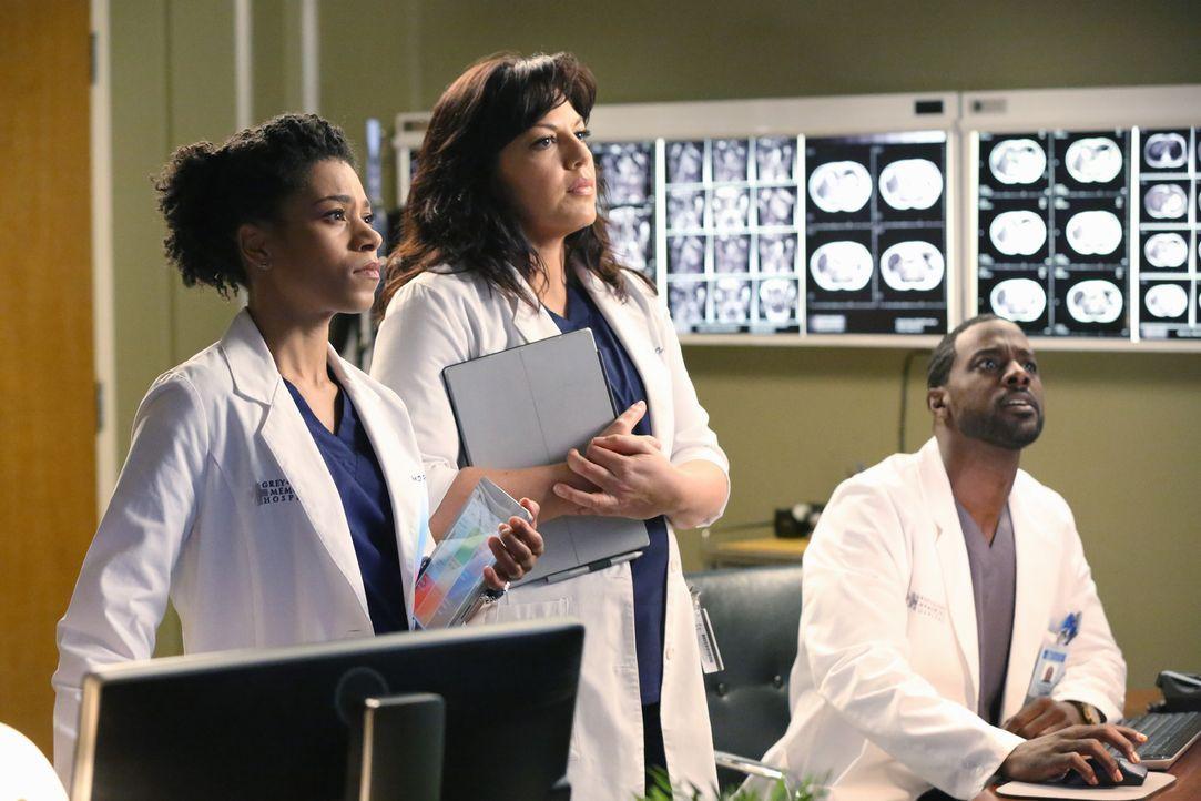 Ein Erdbeben sorgt im Grey Sloan Memorial Hospital für Chaos: Maggie (Kelly McCreary, l.), Callie (Sara Ramirez, M.) und Ethan (Lance Gross, r.) ... - Bildquelle: ABC Studios