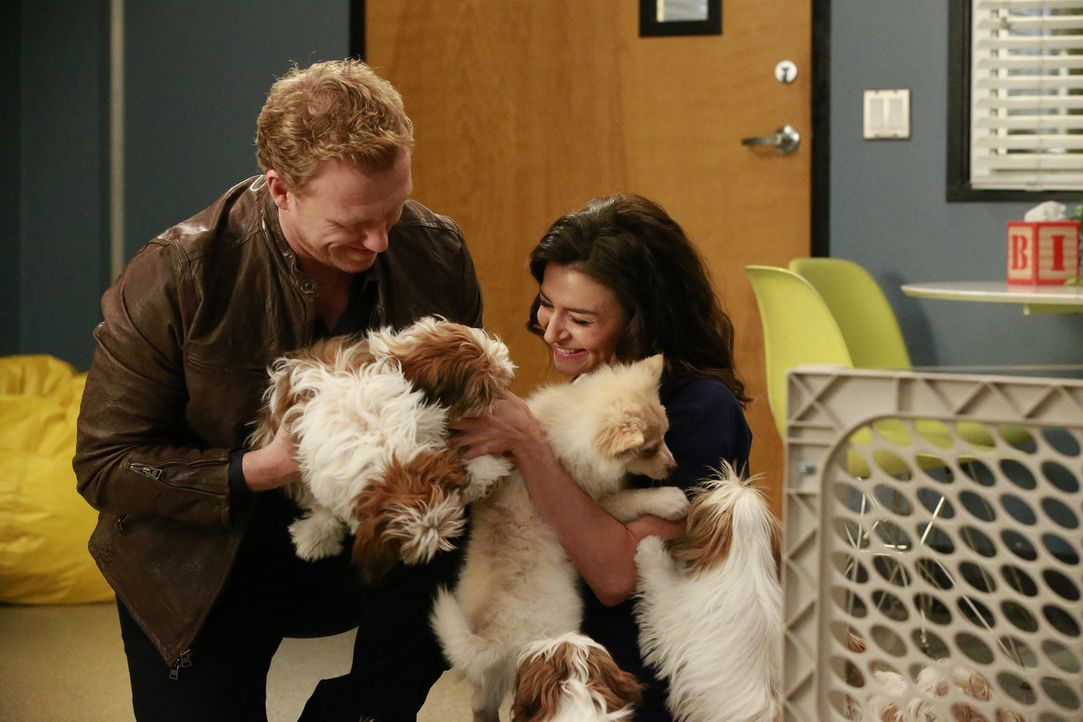 Owen (Kevin McKidd, l.) hat eine ganz besondere Überraschung für Amelia (Caterina Scorsone, r.), während April eine schwierige Entscheidung treffen... - Bildquelle: Mitchell Haaseth ABC Studios