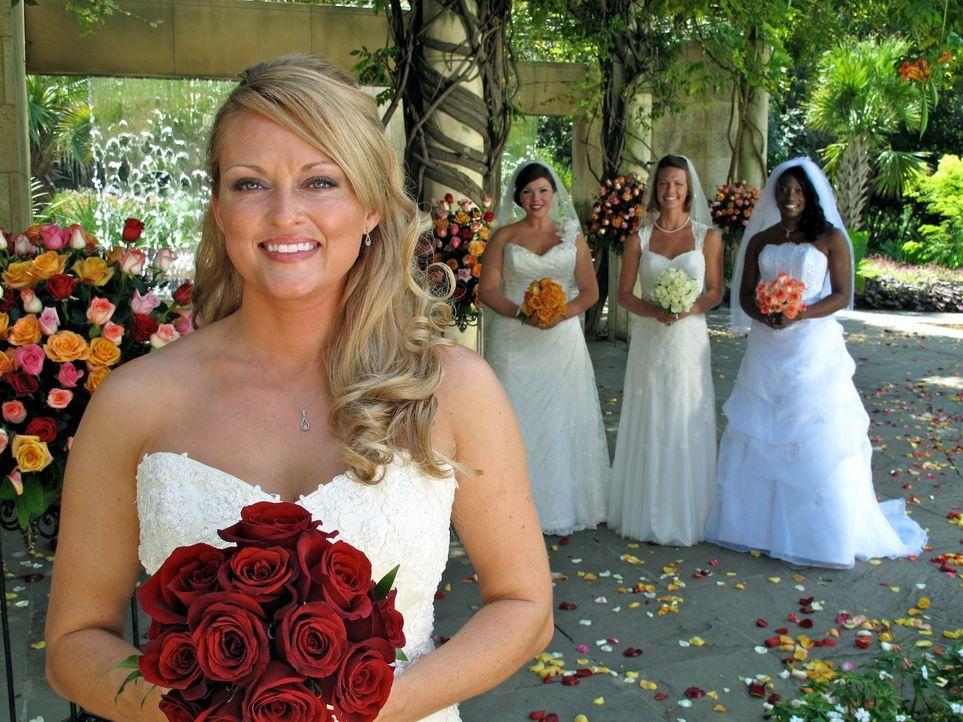 Welche Braut wird die traumhaften Luxus-Flitterwochen gewinnen? Rikki (l.), Sarah (2.v.r.), Tanisha (r.) oder Amy (2.v.l.)? - Bildquelle: 2011 Discovery Communications, LLC