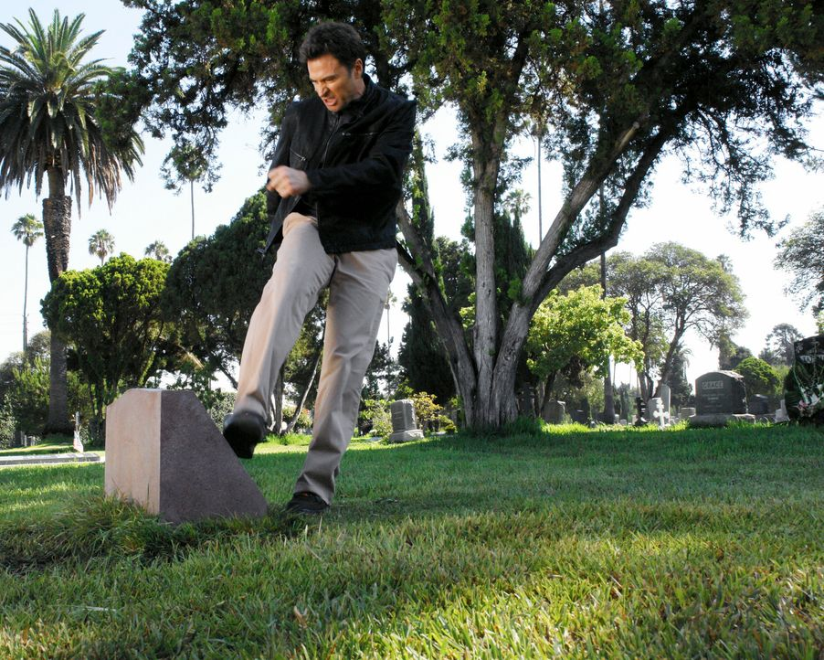 Pete (Tim Daly) ist noch einmal auf dem Friedhof und lässt seinem Ärger freien Lauf ... - Bildquelle: 2007 American Broadcasting Companies, Inc. All rights reserved.