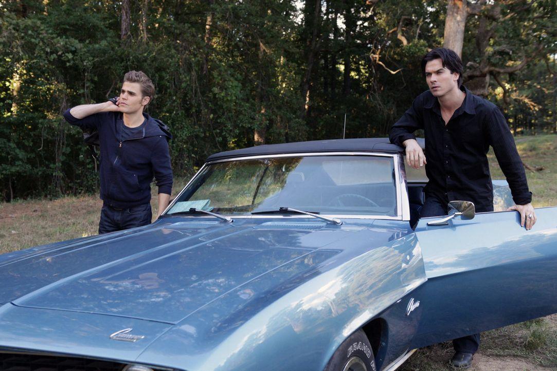 Ohne zu wissen, welche Gefahr auf sie lauert, machen sich Stefan (Paul Wesley, l.) und Damon (Ian Somerhalder, r.) auf den Weg um Elena zu retten... - Bildquelle: Warner Brothers