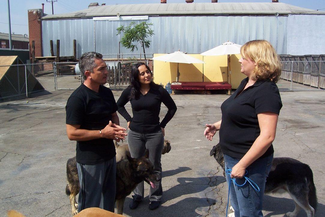 """Lisa (r.) hat ein Problem mit dem aggressiven Hund """"Chip"""". Sie hofft auf die Hilfe vom Hundeflüsterer Cesar Millan (l.) ... - Bildquelle: Rive Gauche Intern. Television"""