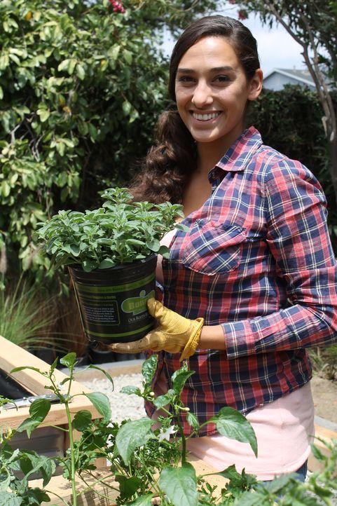 Landschaftsgärtnerin Sara Bendrick hat viele schöne Ideen für den Garten ihrer neusten Kunden ... - Bildquelle: 2014, DIY Network/Scripps Networks, LLC. All Rights Reserved.