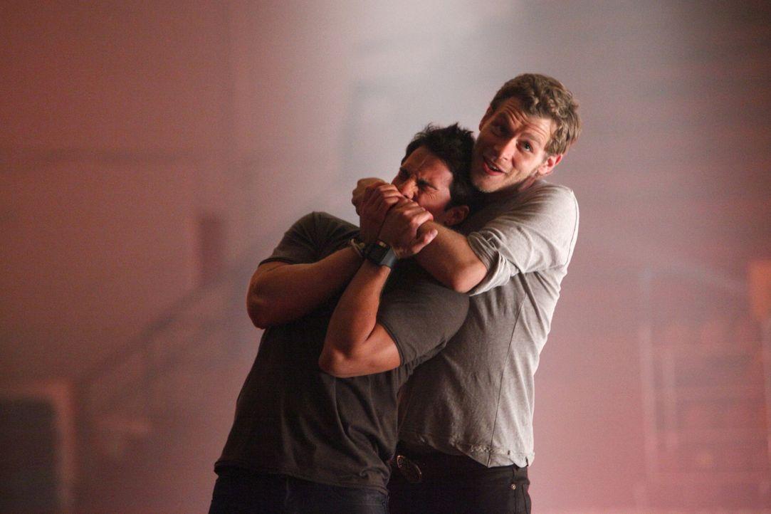 Klaus (Joseph Morgan, r.) schafft die tödlichen Voraussetzungen dafür, dass Tyler (Michael Trevino, l.) sich in einen Hybriden verwandelt ... - Bildquelle: Warner Bros. Television