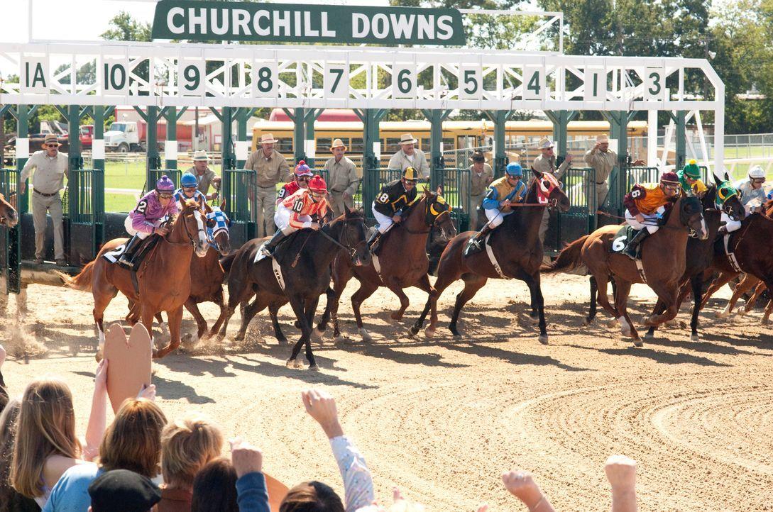 Das Pferderennengeschäft ist hart, doch der talentierte Hengst Secretariat hat gute Chancen den Triple Crown zu gewinnen ... - Bildquelle: John Bramley Disney Enterprises, Inc.  All rights reserved / John Bramley