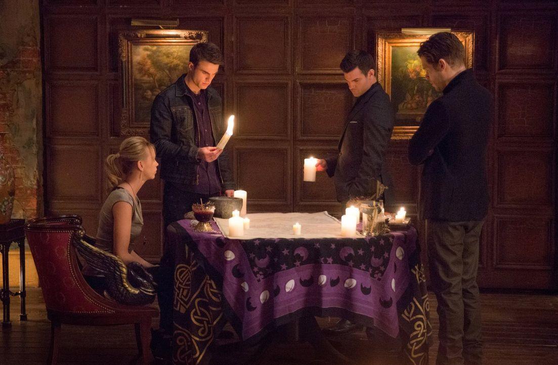Müssen einen Familienrat abhalten, als ein alter Vampir mit tödlichen Absichten und erschreckenden Informationen nach New Orleans kommt: Freya (Rile... - Bildquelle: Warner Bros. Entertainment, Inc.