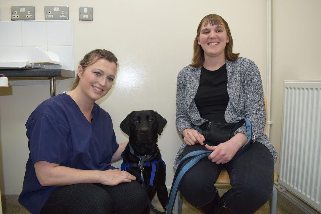 Hunde-Dame Tinka hat einige Geschwüre, die sich als Tumor entpuppen könnten ... - Bildquelle: True North
