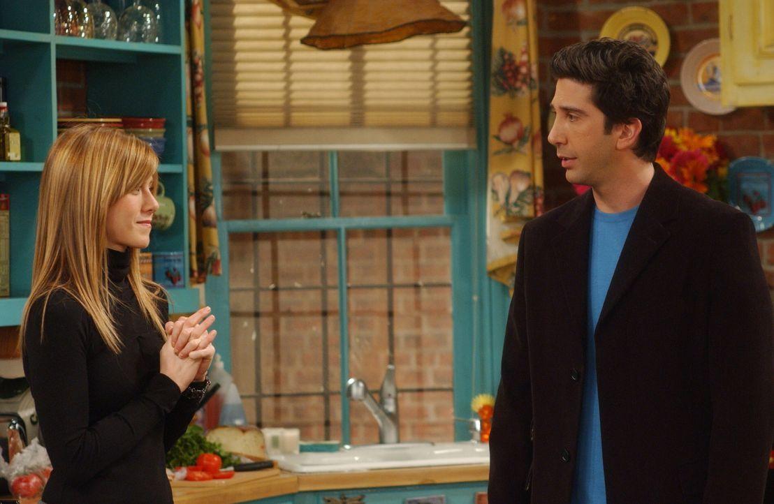 Obwohl Rachel (Jennifer Aniston, l.) ihren Job verloren hat, freut sie sich für Ross (David Schwimmer, r.), der eine Anstellung auf Lebenszeit bekom... - Bildquelle: 2003 Warner Brothers International Television