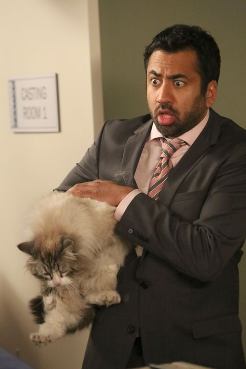 Alys Freund Tripp (Kal Penn) erlebt mit Winston und dessen Katze eine Überraschung ... - Bildquelle: Patrick McElhenney 2016 Fox and its related entities. All rights reserved. / Patrick McElhenney