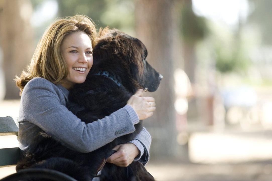 Sarah Nolan (Diane Lane) ist frisch geschieden und soll wieder an den Mann gebracht werden - das findet zumindest ihre Familie. Um das Ganze zu besc... - Bildquelle: Warner Brothers