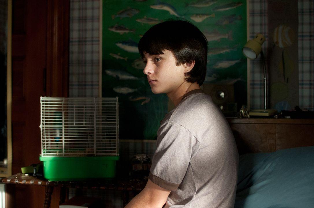 Das Leben des kleinen Henry (Gattlin Griffith) verändert sich schlagartig, als seine Mutter einen verletzten Anhalter aufnimmt, der sich als entfloh... - Bildquelle: 2016 Paramount Pictures. All Rights Reserved.