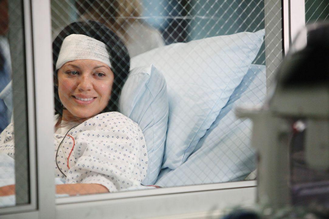 Alle ziehen an einem Strang, um Callie (Sara Ramirez) und ihrem Baby Sofia während des schmerzvollen Weges zur Besserung beizustehen ... - Bildquelle: ABC Studios