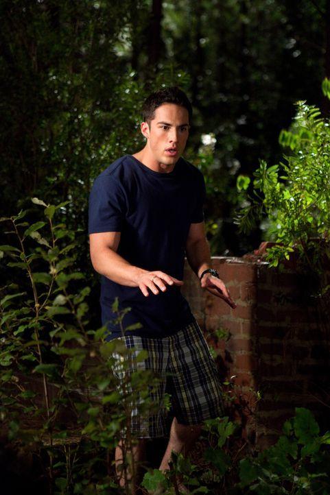 Überrascht stellt Tyler (Michael Trevino) fest, dass sich der angriffslustige Werwolf auf sein Kommando hin zurück in den Wald verzieht. Noch ahnt... - Bildquelle: Warner Brothers