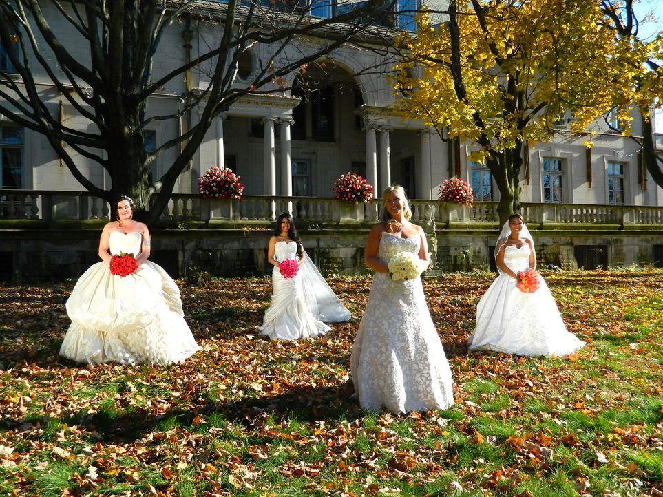 Kämpfen um den Titel und eine atemberaubende Hochzeitsreise: Marie (l.), Anumita (2.v.l.), Karen (2.v.r.) und Zoranda (r.) ... - Bildquelle: Richard Vagg DCL