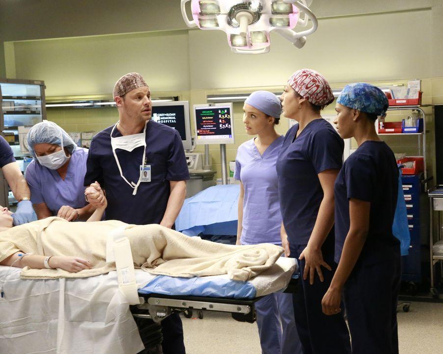 Während sich die Beziehung von Maggie und Andrew weiterentwickelt, sind sich Alex (Justin Chambers, 2.v.l.), Callie (Sara Ramirez, 2.v.r.), Maggie (... - Bildquelle: Michael Hassan ABC Studios