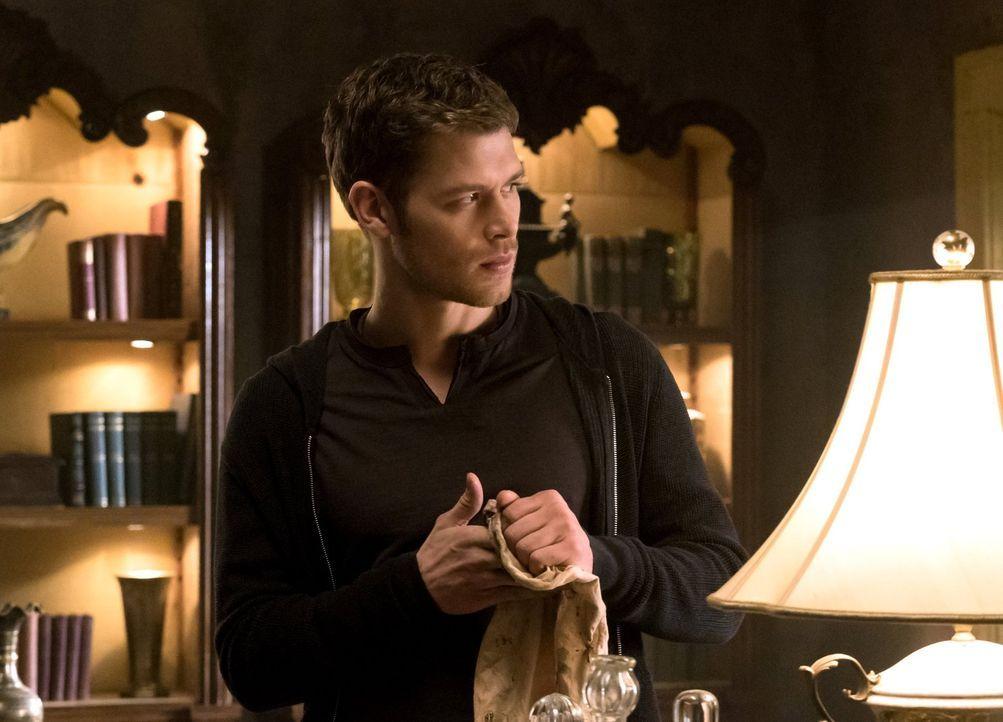 Wie wird Klaus (Joseph Morgan) damit umgehen, das Dahlia ihm eine Frist setzt und Freya versucht, die Familie zu spalten? - Bildquelle: Warner Bros. Entertainment, Inc