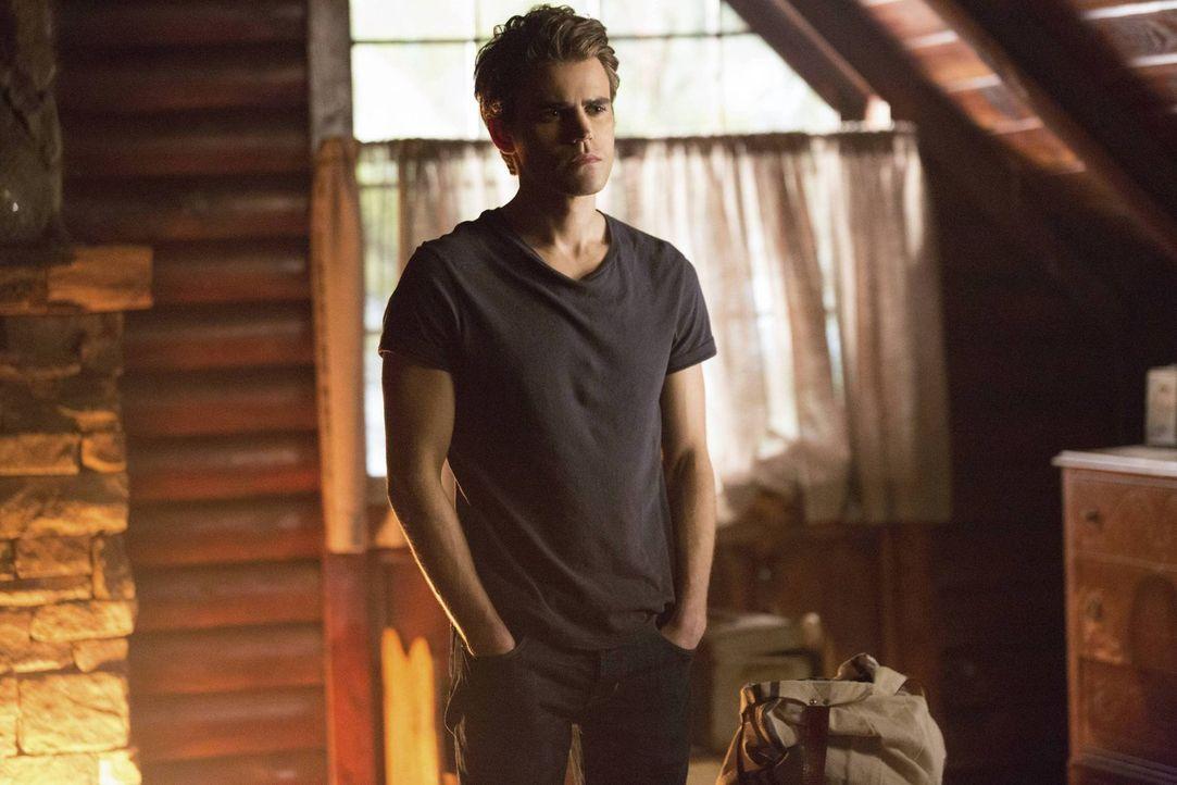 Stefan Salvatore (Paul Wesley) ist in Gefahr und benötigt dringende Hilfe. Ob diese tatsächlich noch rechtzeitig eintreffen wird ist fraglich ... - Bildquelle: Warner Brothers