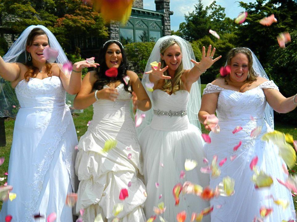 Noch glauben sowohl Chrystal (l.), Cheryl (2.v.l.), Lindsey (2.v.r.), als auch Mandy (r.), dass sie die perfekte Hochzeit organisiert haben ... - Bildquelle: Richard Vagg DCL