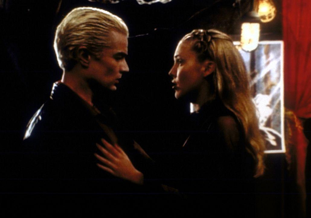 Harmony (Mercedes McNab, r.) freut sich über die Rückkehr von Spike (James Marsters, l.), hält ihm aber trotzdem seine Fehler vor. - Bildquelle: TM +   2000 Twentieth Century Fox Film Corporation. All Rights Reserved.