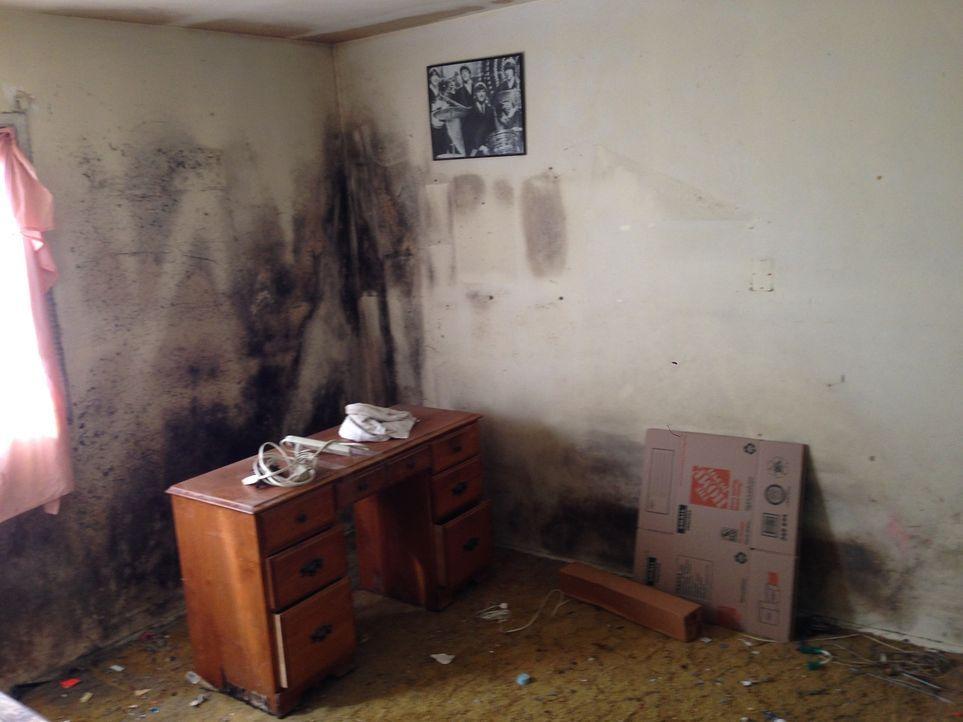 Ganz schön in die Jahre gekommen: Diesem Zimmer wurde schon länger kein neuer Anstrich verpasst ... - Bildquelle: 2014,HGTV/Scripps Networks, LLC. All Rights Reserved