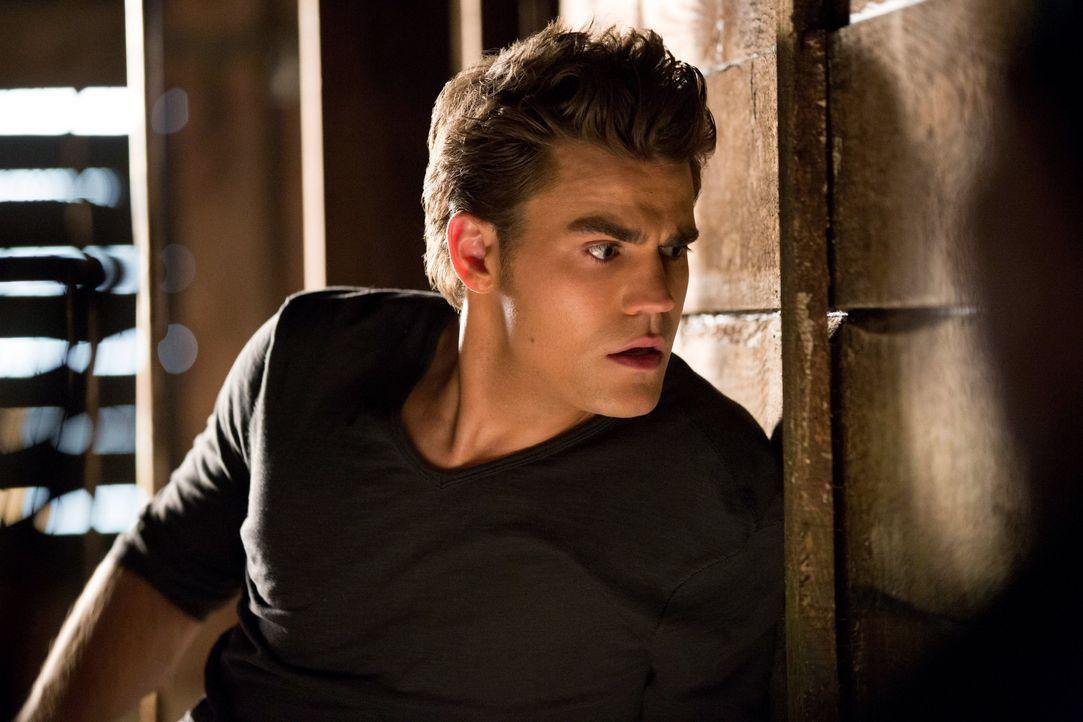 Stefan muss Elena helfen - Bildquelle: © Warner Bros. Entertainment Inc.