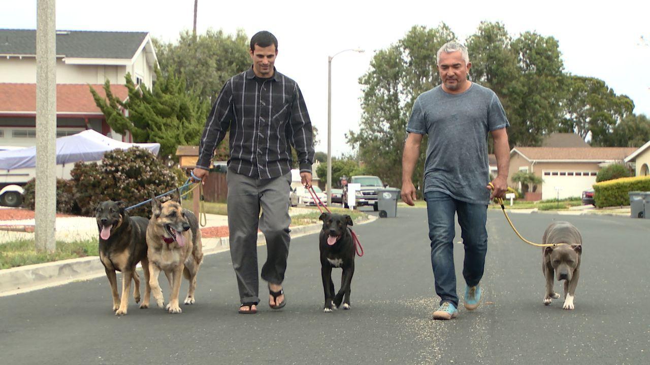 Eigentlich würden Janette und John (l.) gerne an die Familiengründung denken, doch zurzeit sorgen ihre drei Hunde dafür, dass ihr Haus kein Ort für... - Bildquelle: NGC/ ITV Studios Ltd