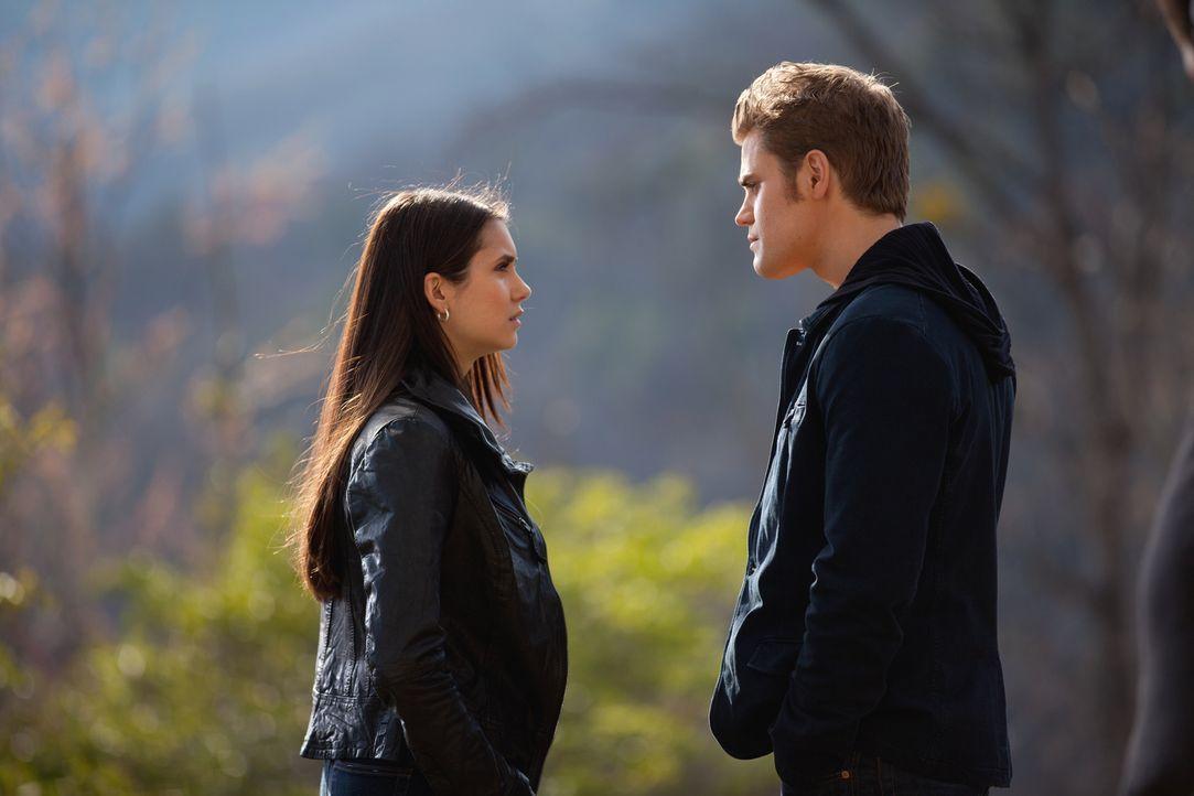 Stefan (Paul Wesley, r.) ist außer sich, als er von Elena (Nina Dobrev, l.) erfährt, dass sie niemals ein Vampir sein möchte ... - Bildquelle: Warner Brothers