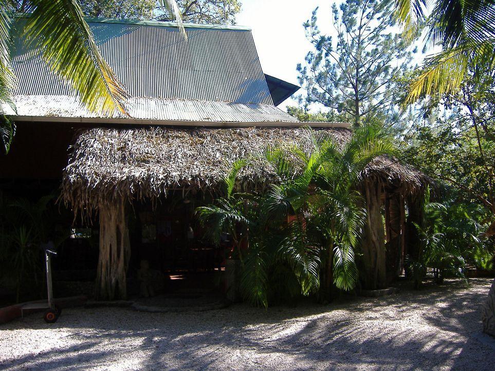 Guido (46) und Anke Scheidt (41) sind vor zwei Jahren aus Deutschland nach Costa Rica ausgewandert. Dort haben sie sich ihren Traum und eine Hotelan... - Bildquelle: kabel eins