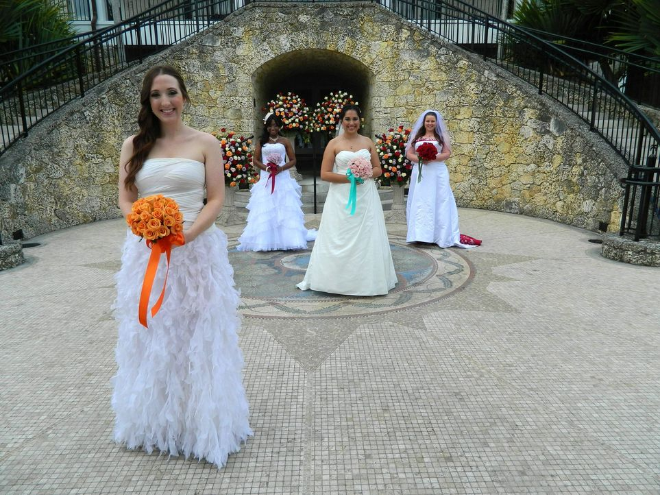 Wird Biancas (l.) Hochzeit ihre Konkurrentinnen Debbie (2.v.l.), Vivian (2.v.r.) und Kim (r.) aus den Socken hauen? - Bildquelle: Richard Vagg DCL