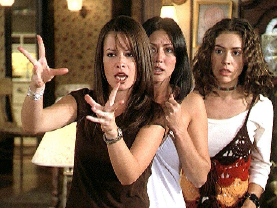Piper (Holly Marie Combs, l.), Prue (Shannen Doherty, M.) und Phoebe (Alyssa Milano, r.) wurden von Cupido um Hilfe gebeten, da er von dem bösen D - Bildquelle: Paramount Pictures