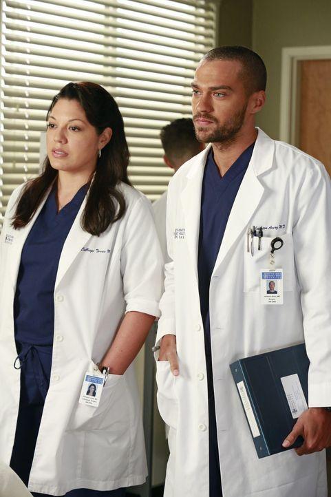 Versuchen, Derek zu einer riskanten Operation zu überreden, die seine Hand wieder funktionsfähig machen könnte: Callie (Sara Ramirez, l.) und Jackso... - Bildquelle: ABC Studios