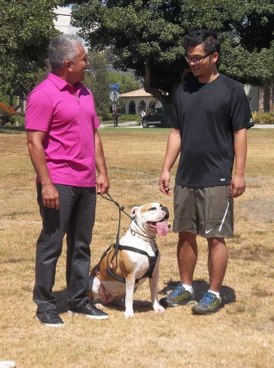 Sam (r.) braucht dringend Hilfe, damit er seinen Boxer Matilda nicht abgeben muss. Da ist Cesar (l.) genau der Richtige ... - Bildquelle: NGC/ ITV Studios Ltd