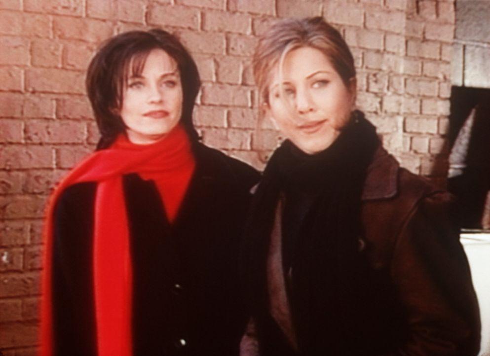 Monica (Courteney Cox, l.) hat sich in Jean-Claude Van Damme verliebt und traut sich aber nicht, ihn anzusprechen. Rachel (Jennifer Aniston, r.) spr... - Bildquelle: TM+  2000 WARNER BROS.