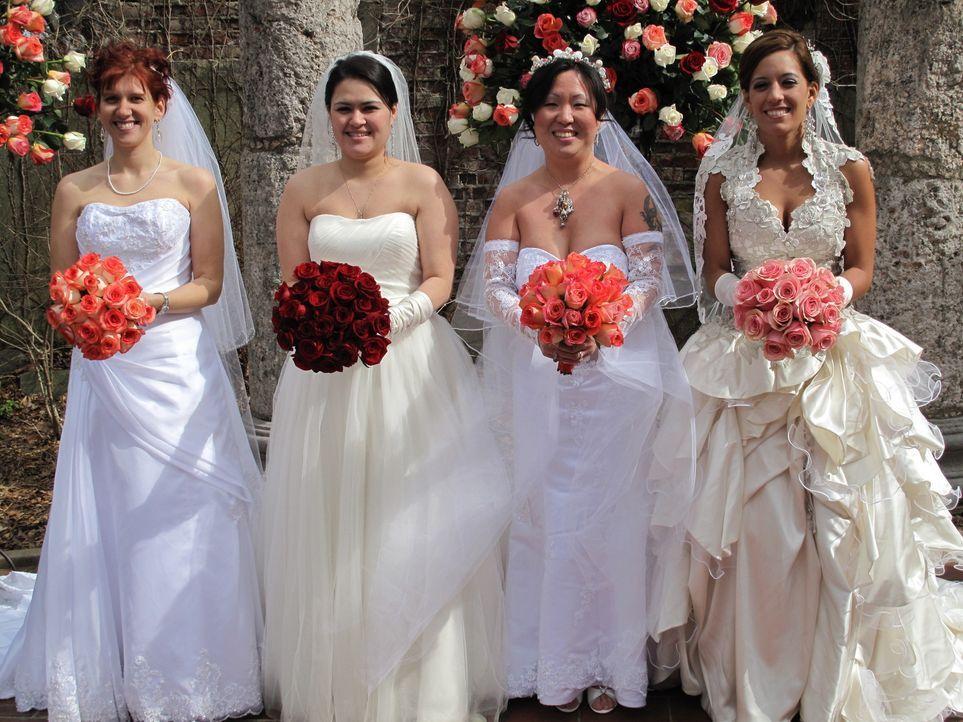 Haben sich spektakuläres für ihre Hochzeiten überlegt: Ann (l.), Marisol (2.v.l.), Soo (2.v.r.), Celeste (r.) ... - Bildquelle: 2011 Discovery Communications, LLC