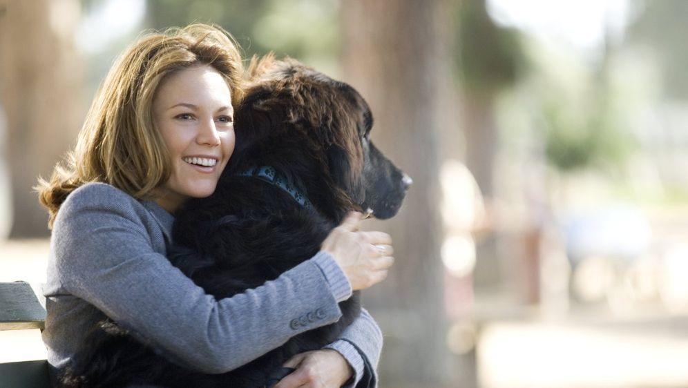 Frau mit hund sucht mann mit herz film online sehen