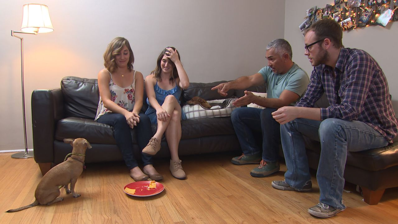 Nachdem sich Ivan (r.) hilfesuchend an Cesar (2.v.r.) gewandt hat, weil er, seine Freundin Amber (2.v.l.) und deren Schwester Ashley (l.) mit den dr... - Bildquelle: NGC/ ITV Studios Ltd