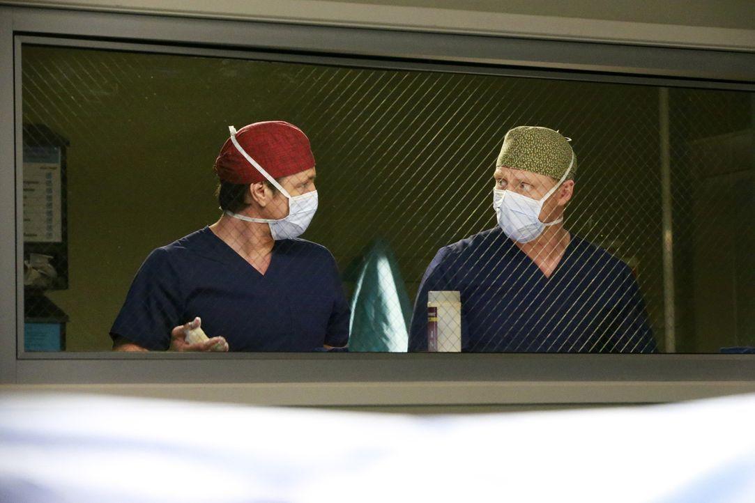 Während sie sich um eine Patientin kümmern, muss Bailey eine schwierige Entscheidung treffen: Owen (Kevin McKidd, l.) und Nathan (Martin Henderson,... - Bildquelle: Mitch Haaseth 2016 American Broadcasting Companies, Inc. All rights reserved.