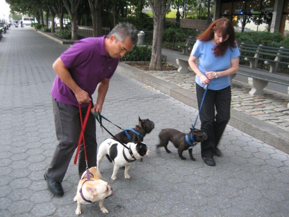 Die New Yorkerin Lynn (r.) ist ein richtiger Hundenarr. Sie besitzt gleich ein ganzes Hunderudel. Nur Hündin Tallulah bereitet ihr große Sorgen. Sie... - Bildquelle: Rive Gauche Intern. Television