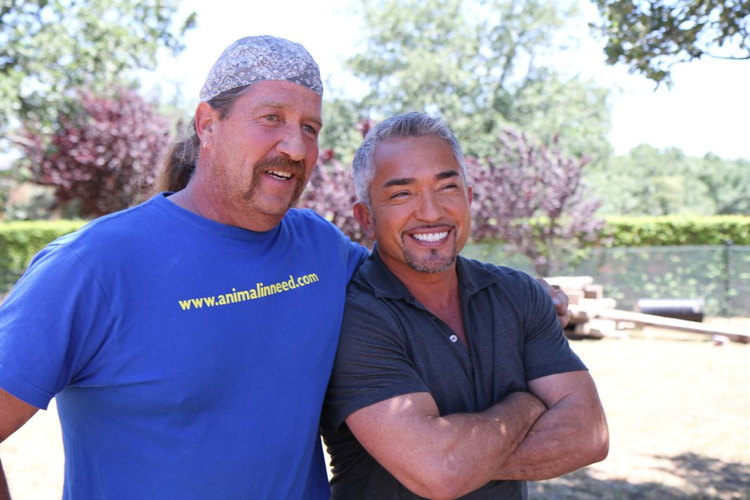 Peter Koekebakker (l.) kümmert sich liebevoll um Amigo, aber Cesar (r.) weiß, dass nur eine richtige Familie für den Jagdhund das Wahre ist ... - Bildquelle: Belén Ruiz Lanzas 360 Powwow, LLC / Belén Ruiz Lanzas