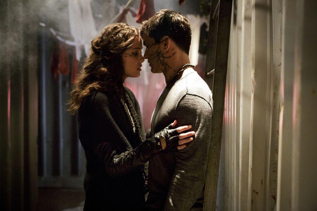 Während Teri (Chelsea Gilligan, l.) sich das Vertrauen von Castor (Johnathon Schaech, r.) erschleicht, braucht Drake die Hilfe seiner Mutter, um die... - Bildquelle: 2014 The CW Network, LLC. All rights reserved.