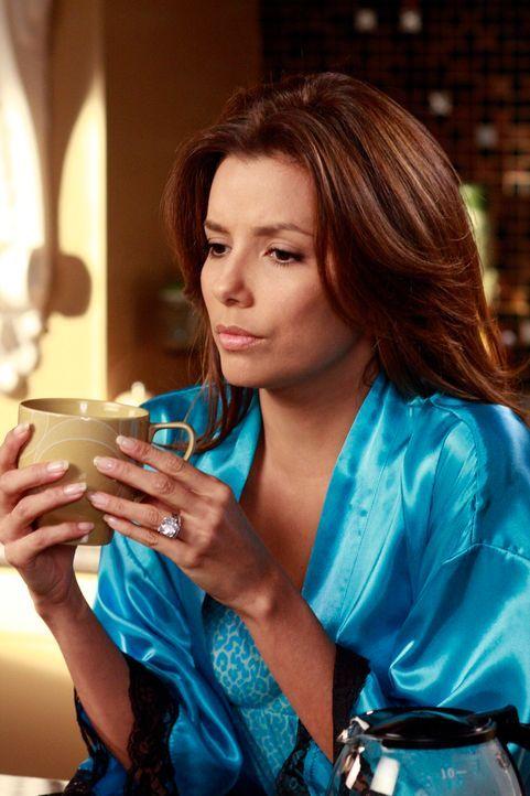 Schwelgt in Erinnerungen: Gabrielle (Eva Longoria) ... - Bildquelle: ABC Studios