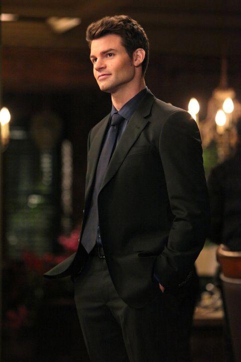 Wird sich Elijah (Daniel Gillies) mit Damon zusammentun, um Klaus endgültig aus dem Weg zu räumen? - Bildquelle: Warner Brothers