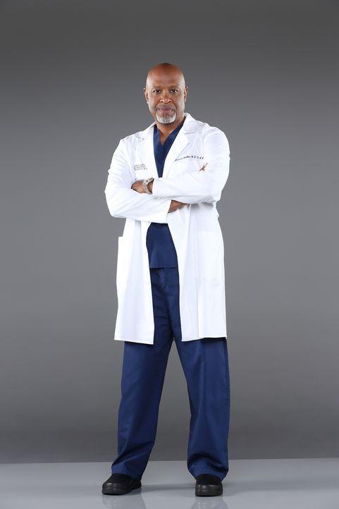 (10. Staffel) - Beruflich weiß Dr. Richard Webber (James Pickens, Jr.) immer, was er tut ... - Bildquelle: ABC Studios