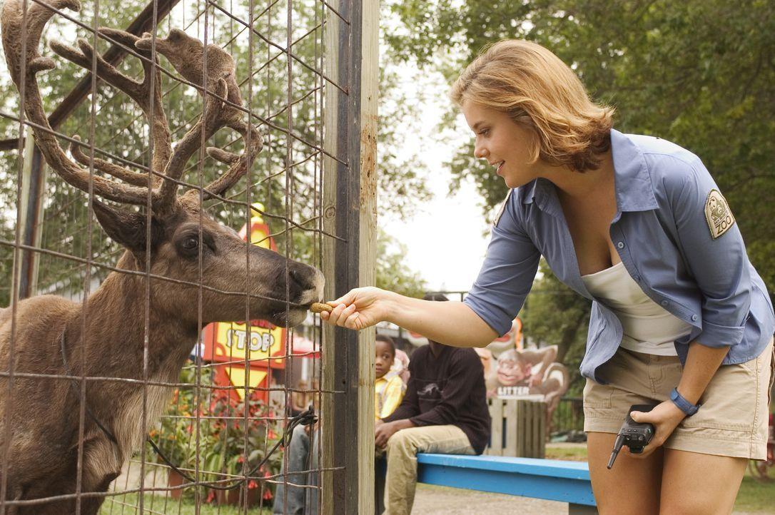 Auf der Suche nach Buddy lernt Nick Sandy (Ashley Williams, r.) eine junge, hübsche Tierpflegerin kennen, die Buddy bereits gut kennen gelernt hat... - Bildquelle: Buena Vista International Television