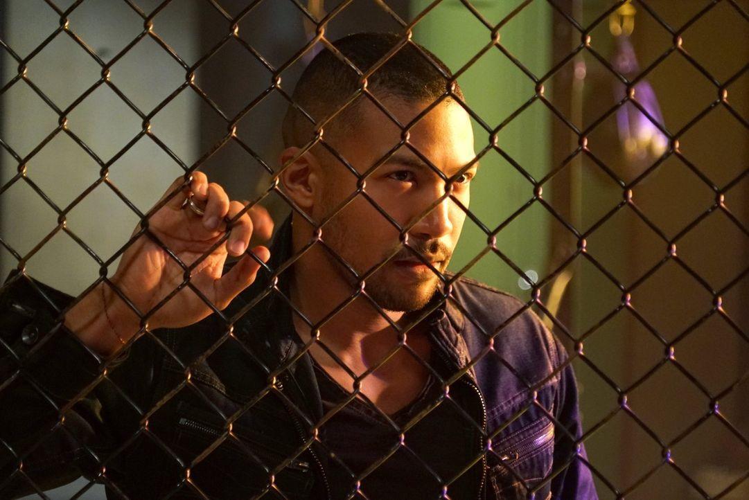 Der Kampf um die Macht über die Strix bringt Marcel (Charles Michael Davis) auf eine Idee, die weder Aya noch Elijah gefallen wird. Oder? - Bildquelle: Warner Bros. Entertainment, Inc.